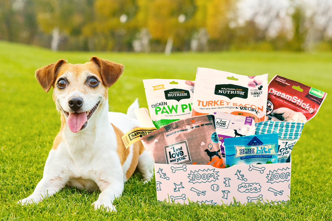 Pup Pack Dog Treats and Toys Box